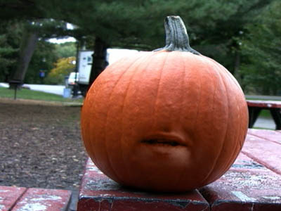 The Pumpkin Who Was An Asshole